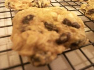 Closeup - oatmeal raisin cookie